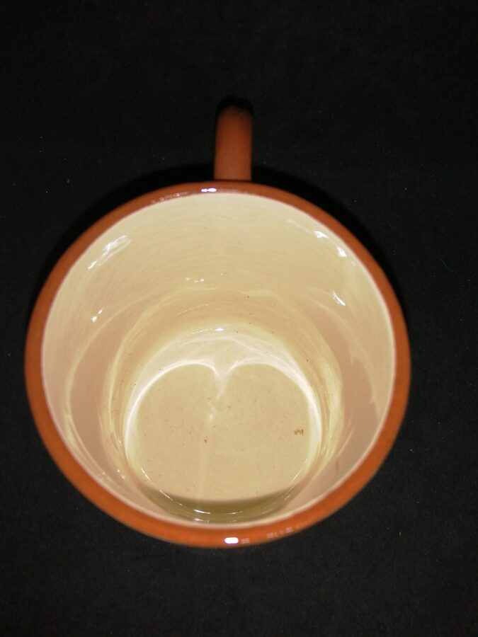 Devonware Pottery Land's End Teacup